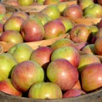 名産・余市のリンゴは会津藩士が始まり 大日本果汁株式会社の「リンゴジュース」