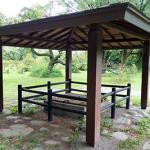 ドラマ「赤ひげ」小石川養生所があった場所 現在の「小石川植物園(旧小石川御薬園)」
